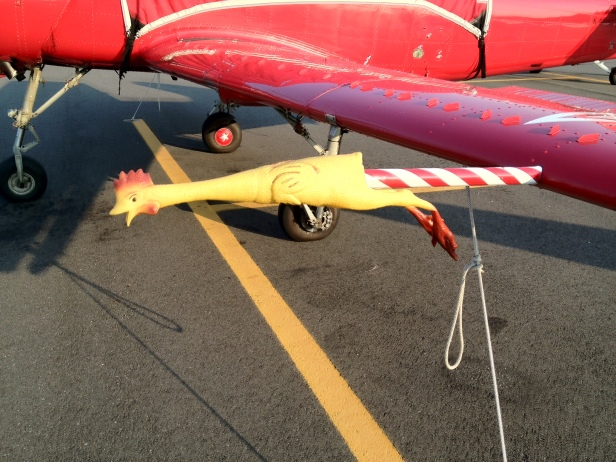 Chicken pitot tube cover