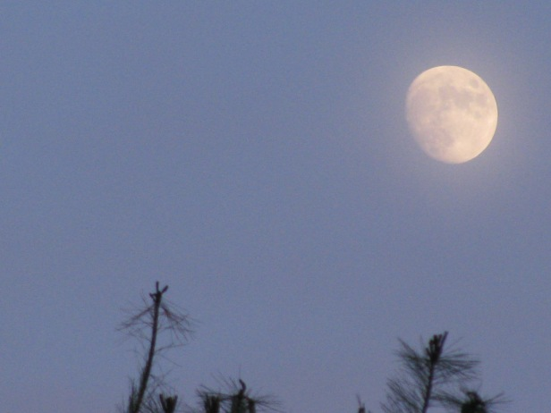 THE MOON'S PHASES = PARTIAL INSPIRATION FOR WANING AND WAXING MAGIC