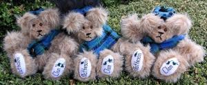 Matheson Bears