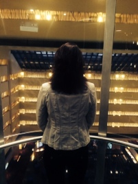 Me in the elevator of the Marriott Marquis. When my husband took this pic, I was telling him that the last time I'd been there was in 2011 for the RWA conference, just after I sold DARK LIGHT OF DAY.