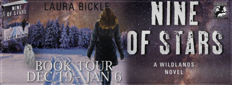nine-of-stars-tour-banner